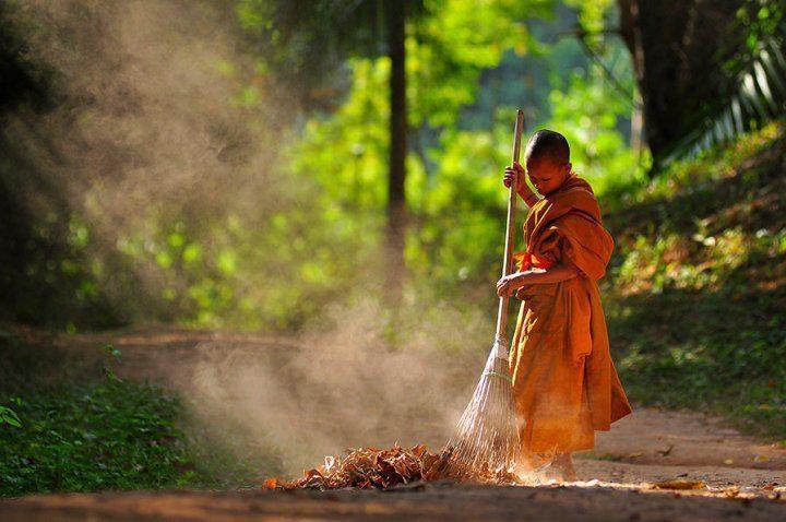 Bài học cuộc sống - Quét lá đa tại chùa