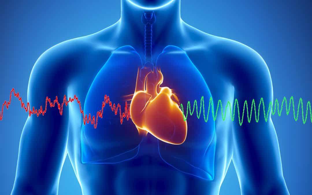 Năng lượng từ trái tim kết nối cảm xúc và con người